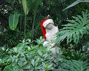 Статуя в парке