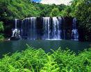 Очень красивый лесной широкий водопад
